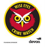 Wise Eyes Logo.jpg